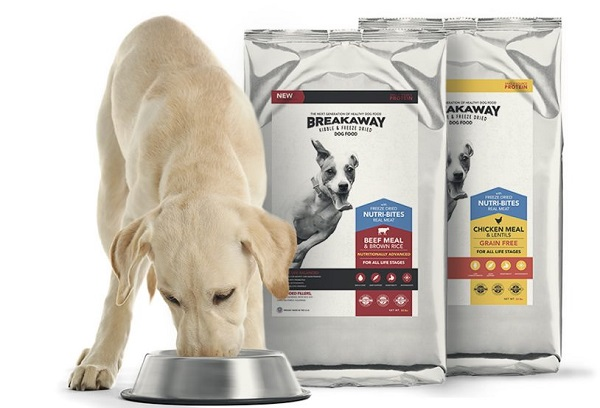 Absolute Best Dog Food On The Market