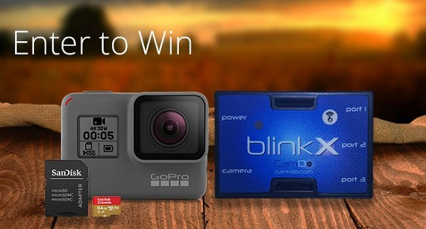 Gopro contests and sweepstakes
