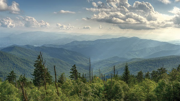 Great Smoky Mountains Vacation for 4 Sweepstakes