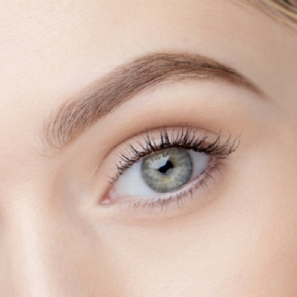 Free Brow Arch During Your Birthday